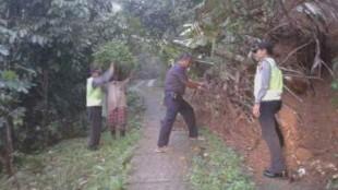 Padal menjumpai pohon tumbang menutup jalan tembus mergosari- kupangan