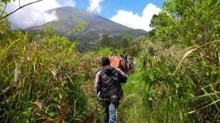 Tim Gabungan sisir lereng Gunung Sindoro