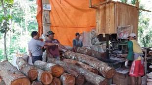Sosialisasi operasi pekat sasar pabrik pengolahan kayu