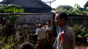 Polsek Wonosobo Laksanakan Sholat Ied dan Penyembelihan Hewan Qurban Bersama Masyarakat